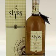 SLYRS 2010